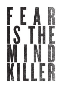 Fear mind killer